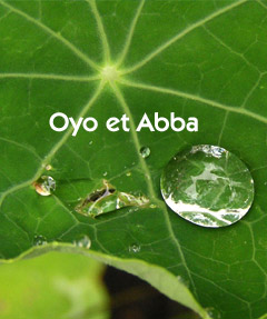 affiche-spectacle-oyo-et-abba